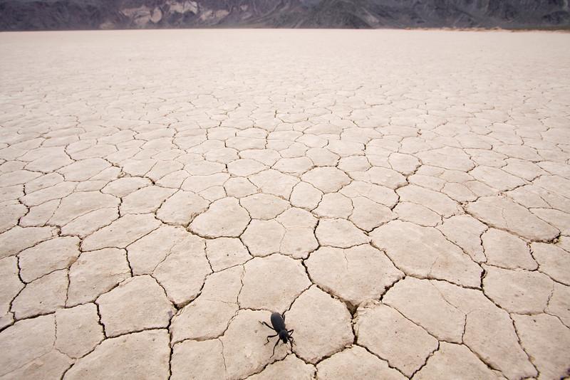 Death Valley20090410_222.jpg