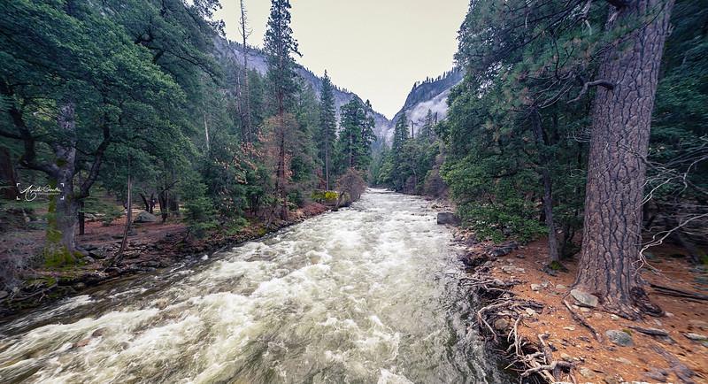 04_22-24_2017_Yosemite_river_01.jpg