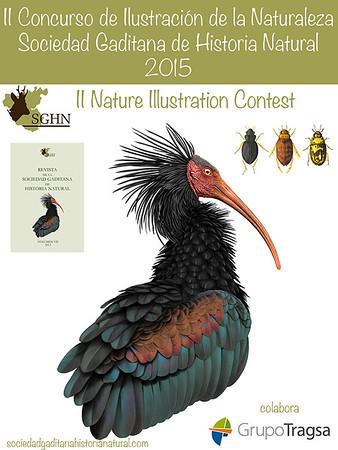II Concurso de Ilustración