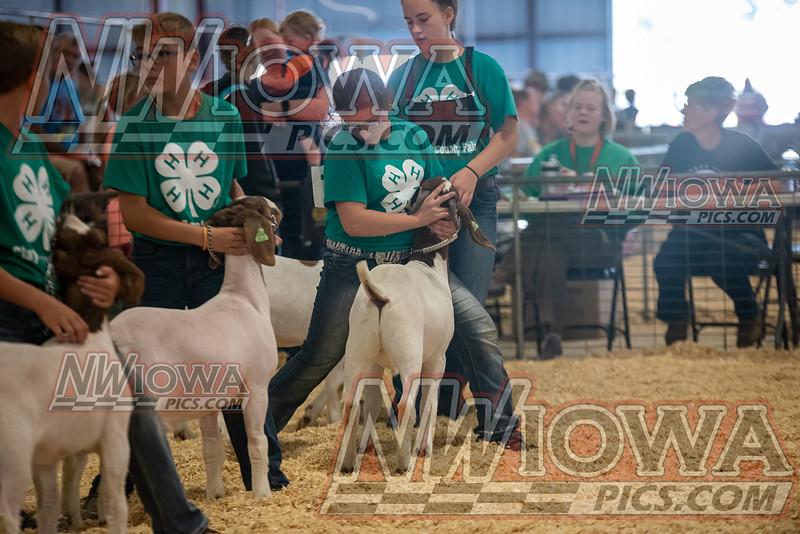 Clay County Fair - Day 9 - 9 - 19 - 21