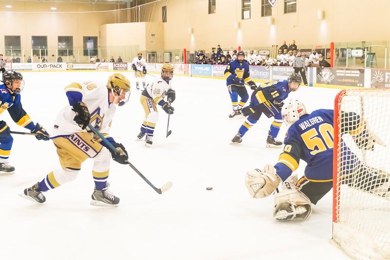 Div1 Hockey v DV--_MG_5689.jpg