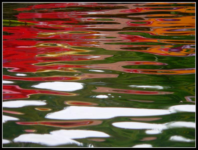06FR23  La Bugue Acquario Perigord Noir 323.jpg
