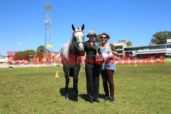 2014 09 30 Perth Royal Show Thoroughbred