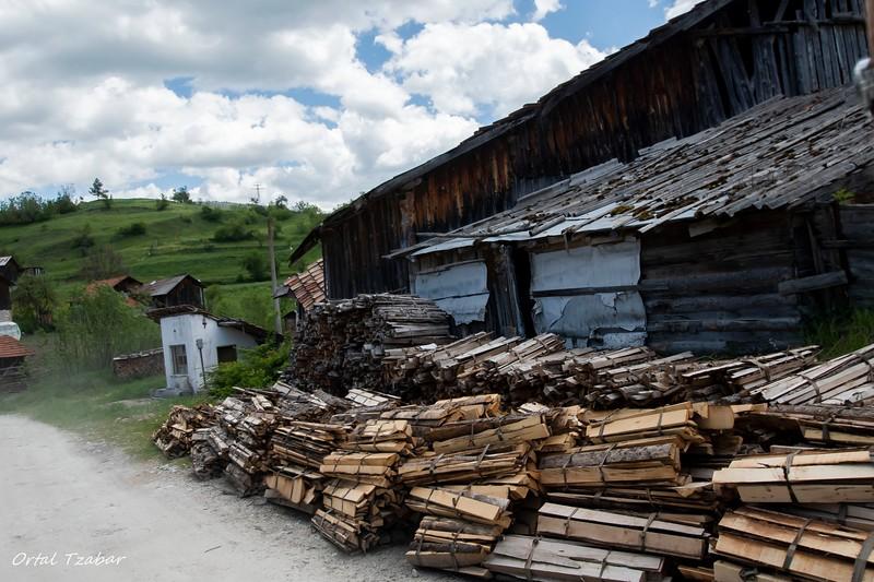 בתי עץ וצפחה בשירוקה לאקה.jpg