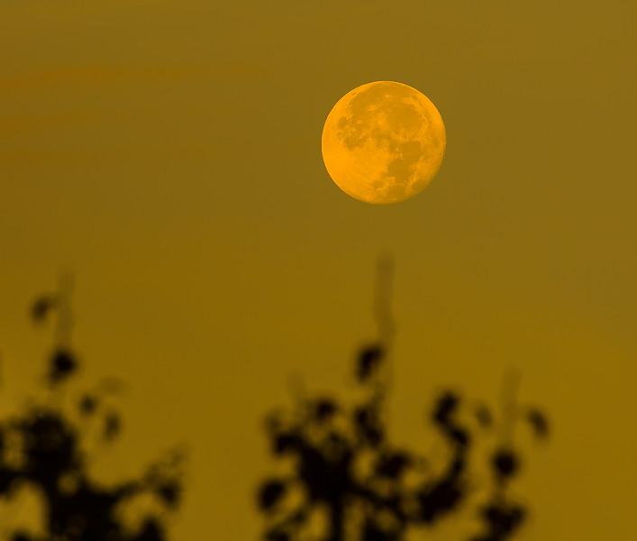 Moon 20.jpg