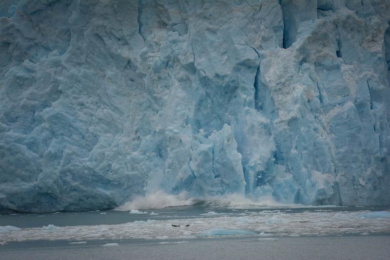 Kenai-Fjords-88.jpg