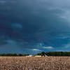 RainstormAshvillePark-005