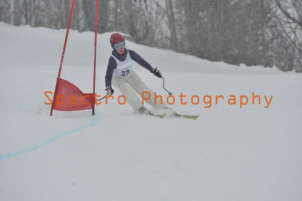 OFSAA Alpine 2010