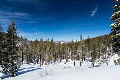 Yosemite NP 2018