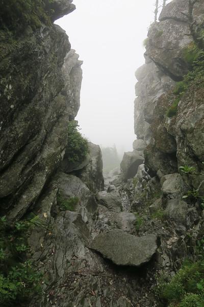 Grandfather Trail -- The Chute -- 5,840'
