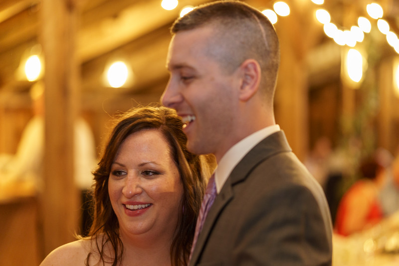 20190601-191232_[Deb and Steve - the reception]_0517.jpg