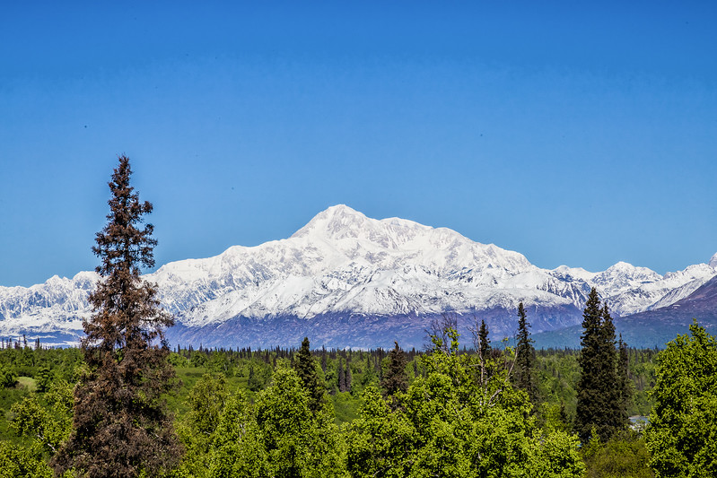 Alaska National Parks - Denali National Park