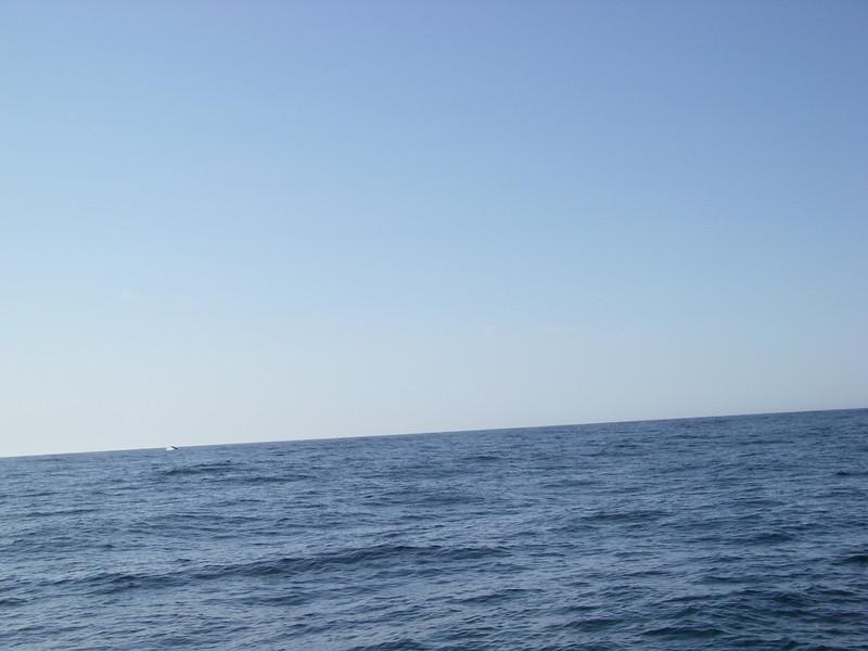 Sydney trip and Mirimbula 046.JPG