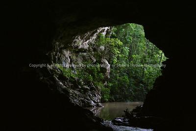 017-forest_cave-belize-05nov06-1466