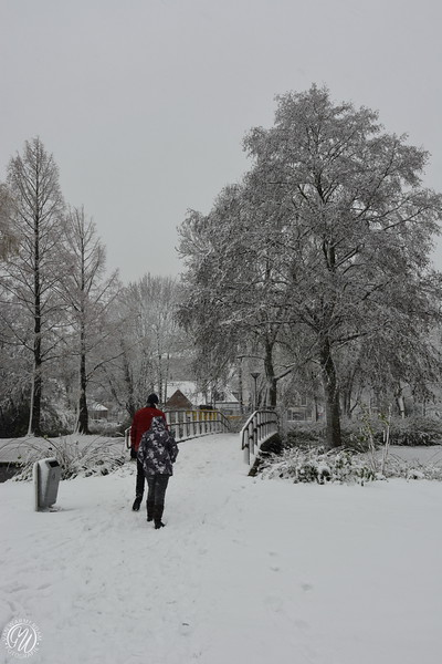 20171210 Winter in Zoetermeer GVW_9123.jpg