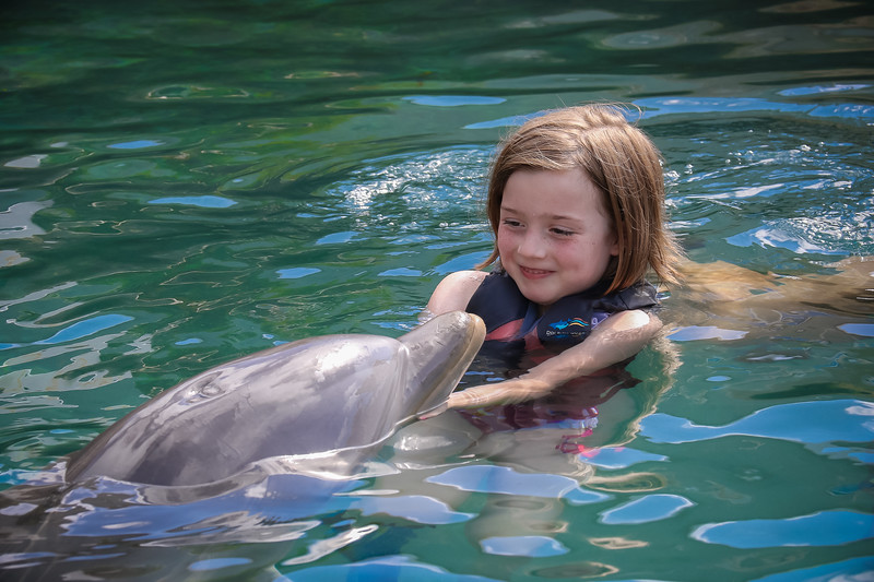 2019 August Dolphin Quest-26.jpg