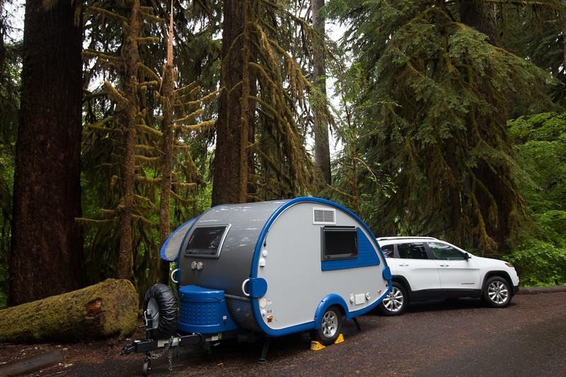 Our  campsite at Sol Duc Campgrounds