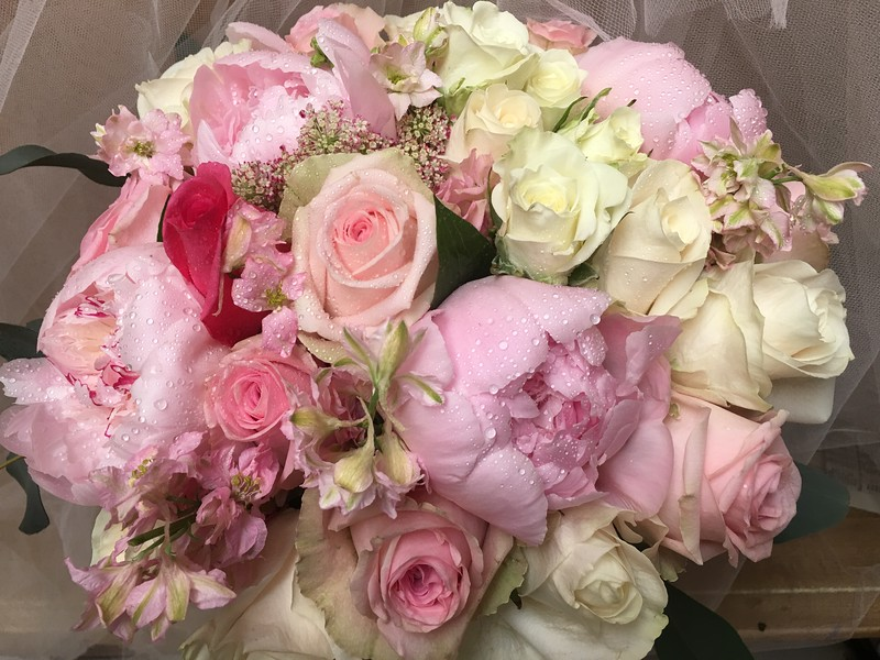pink peonies, roses, white spray roses, pink larkspur, queen anne's lace  $145