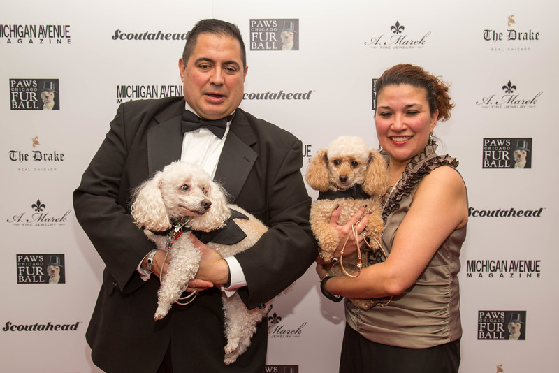 2016.11.18 - 2016 PAWS Chicago Fur Ball 096.jpg