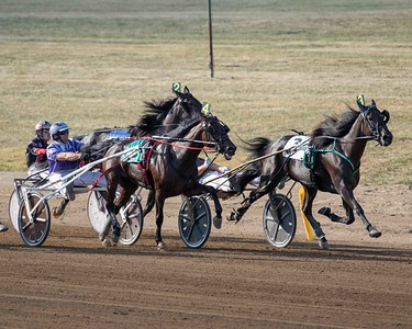 Race 9 DCF 9/16/19