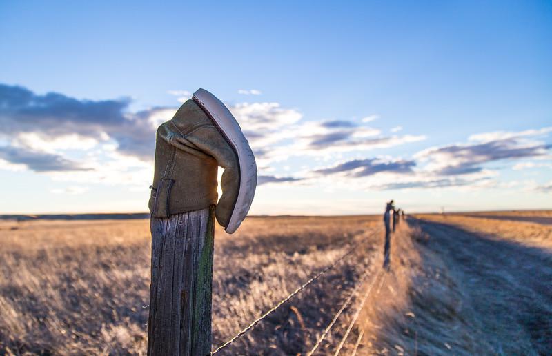 Roadside fence posts in Treasure Co