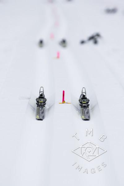 2016-01-24 Telemark Chase Skate