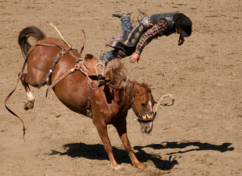 COOMBS RODEO-2009-3689A.jpg