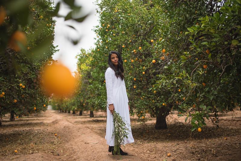 Citrus Styled Shoot (30 of 120).jpg