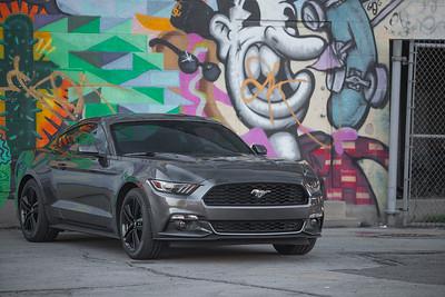 2015 Mustang Tint (01.18.2015)