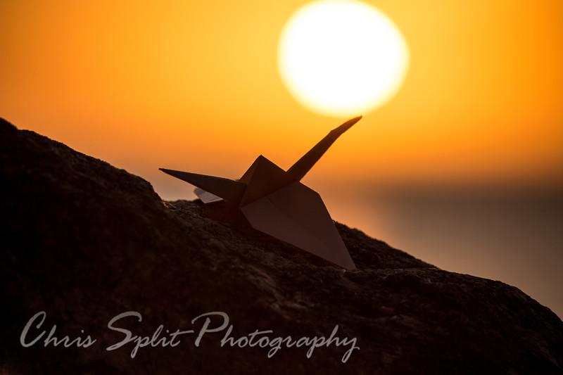 sunset crane 2 (1 of 1).jpg