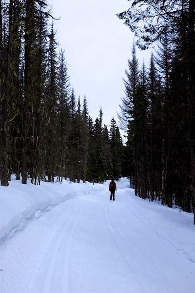 Cross-country skiing at Camp Mercier
