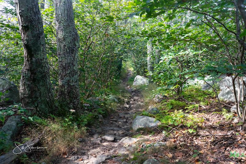 at hike-00408.jpg