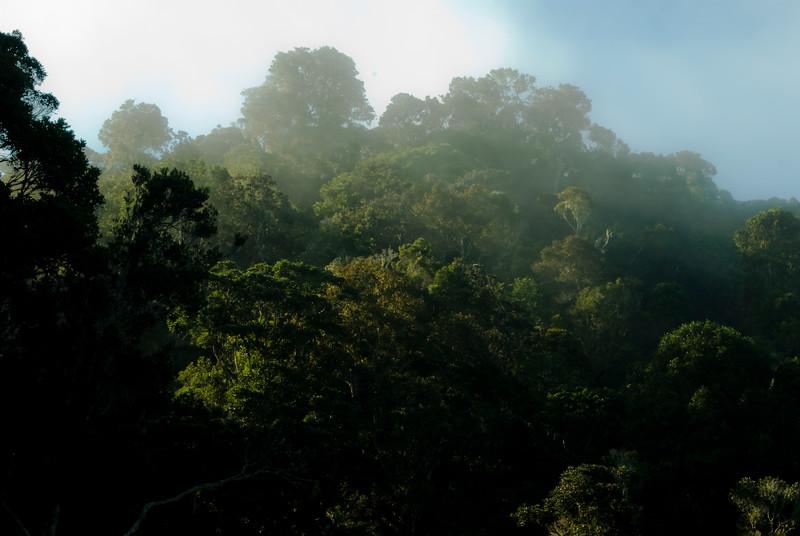 Conservation-14.jpg