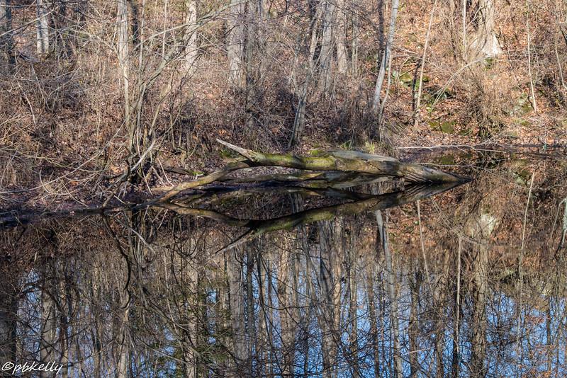 quarry scene 120715-1.jpg