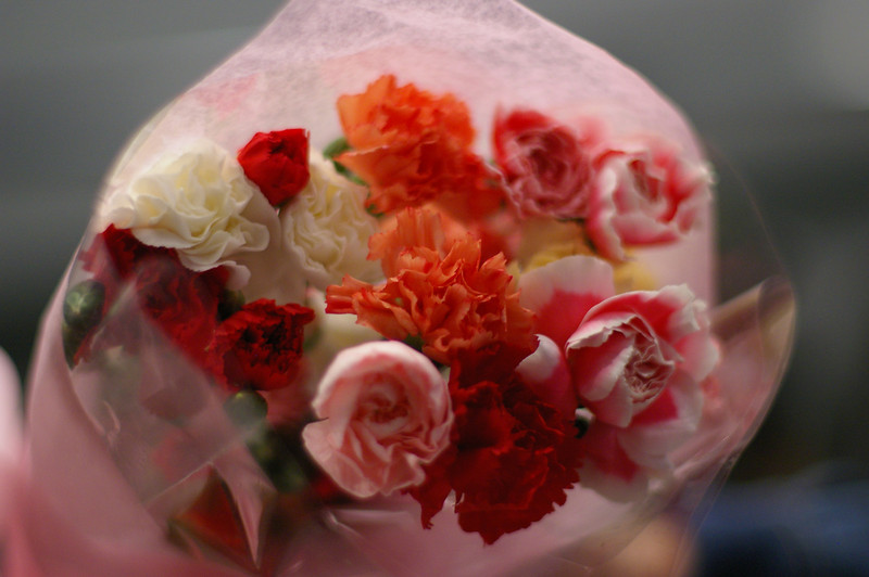 lucys_flowers.jpg