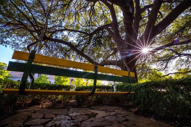Bill Daniel Student Center - Student Union Building - SUB - swing, trees