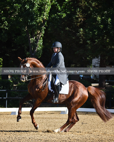 Starr Vaughn Summer Dressage I   July 10-12
