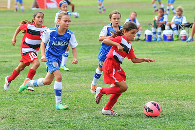 CSC Girls (U9) at Albion Cup 7-19-2014