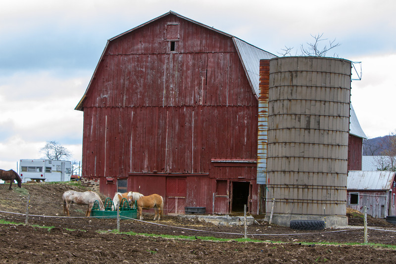 Barn Scapes 2013-0864.jpg