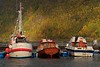 Boats docked at Vik, Norway. © 2004 Kenneth R. Sheide