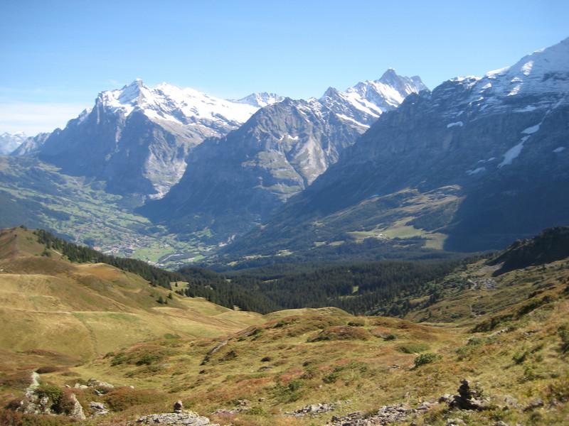 mountains_trees_fields.jpg
