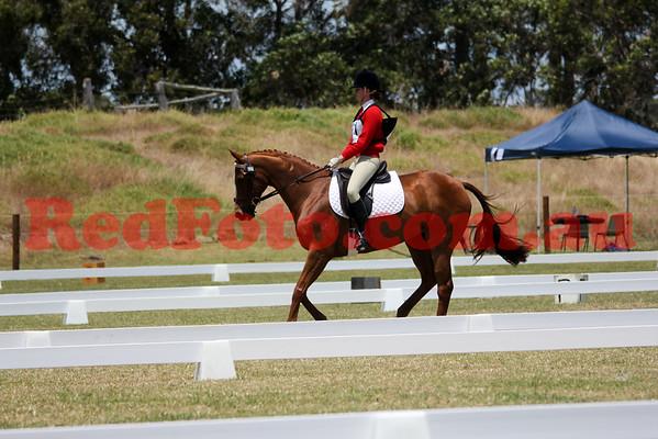 2014 11 15 Capel Pony Club ODE Dressage 12-20 till 13-00