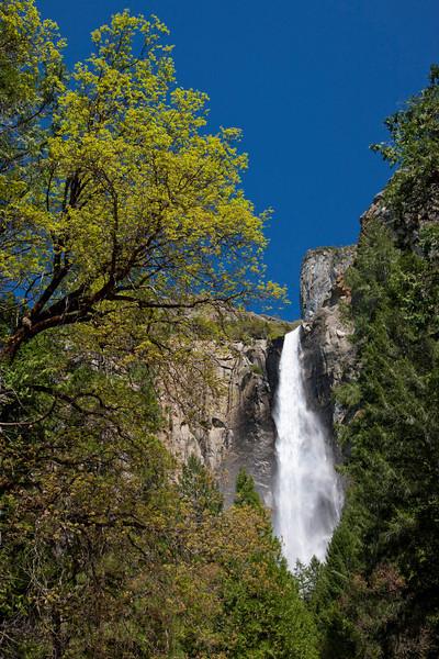 bridelveil-falls-yosemite.jpg