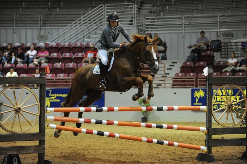 Horse show (40).jpg