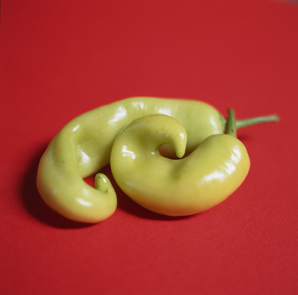 bananachilli4b.jpg