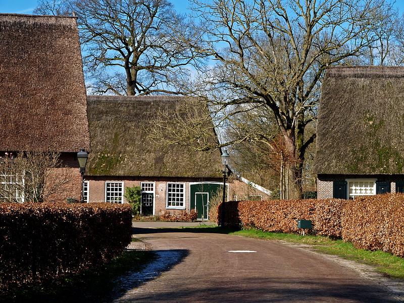 Schoonebeek Oostersebos 5-3-08 (3).jpg