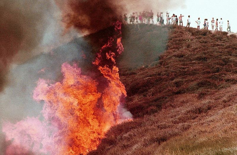 Dana Point Fire