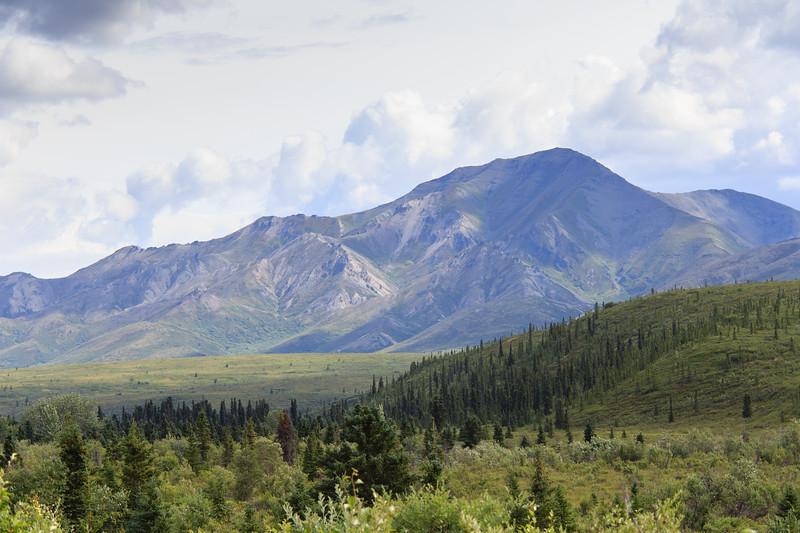 Mountain Vista trail