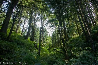 Oregon & Washington Camping Trip - August 9-22, 2021