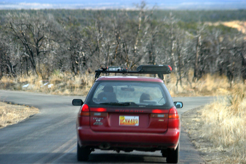 Rich driving in front.  The trees in the background were burnt in a fire.
